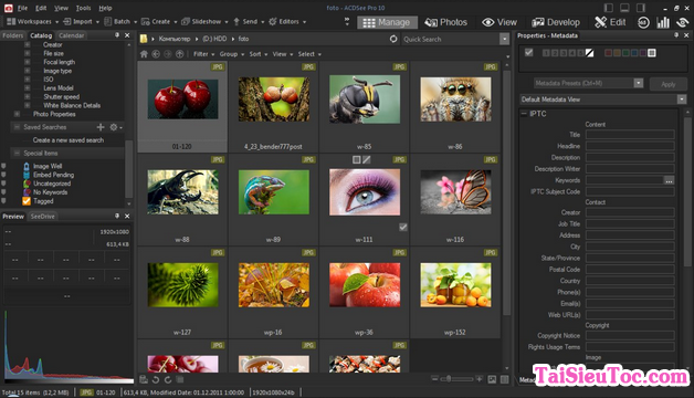 Tải ACDSee Pro - Phần mềm Biên tập và quản lý ảnh số cho Windows + Hình 3